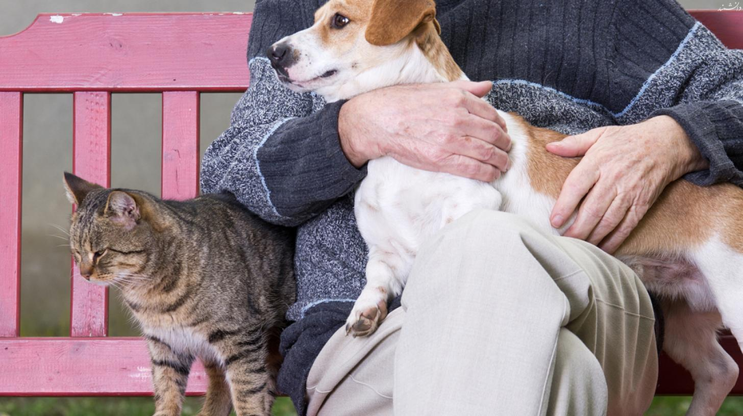 bigstock Man With Dog And Cat 56479442